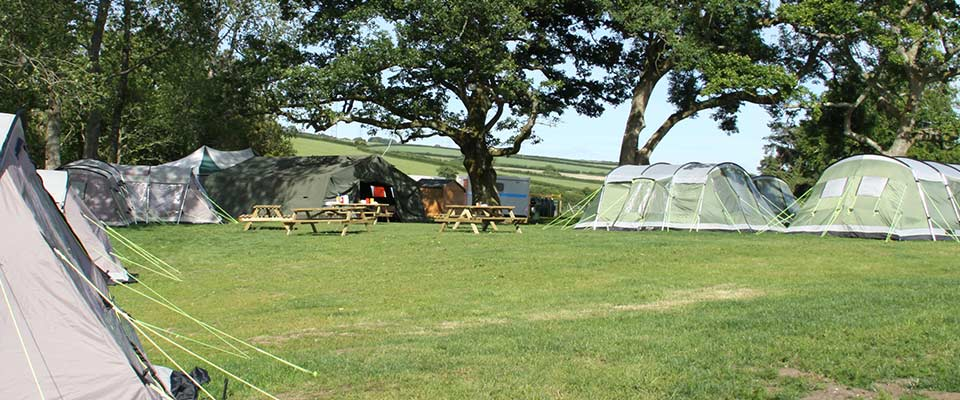 Camping Holidays at Hooke Court, Dorset